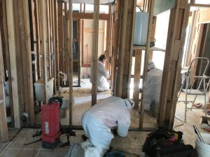 Mold-Remediation-removal